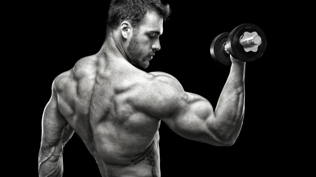 Lad os kende de grundlæggende principper for bodybuilders